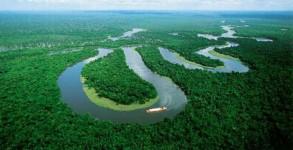 amazonia00